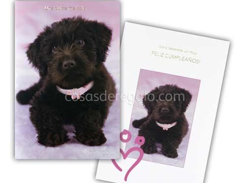 Felicitación de Cumpleaños musical de rachaelhale perro Mimo