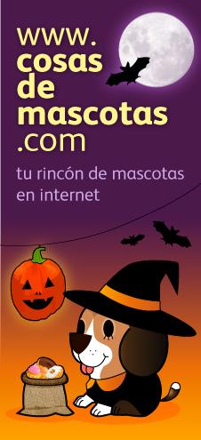 Halloween en Cosas de Mascotas