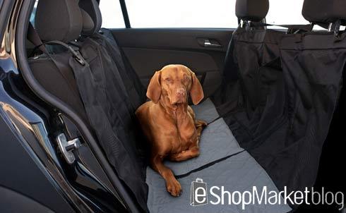 Accesorios para viaje en coche, tu mascota mucho más segura