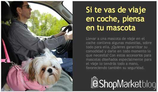 Accesorios de viaje para tu mascota, perros y gatos seguros en el coche