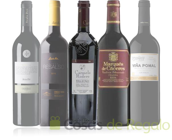 Surtido de vinos tintos, un regalo de categoría
